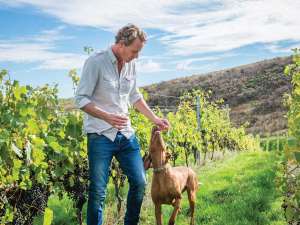Dave Clouston amid Syrah, one of the varieties used in the Two Rivers Rosé.