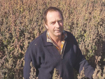 Quinoa growers urged to band together and take on the world