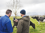 Recruitment drive going well — DairyNZ