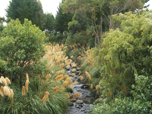 What management needs to be done to ensure riparian strips do not become overloaded and therefore useless?