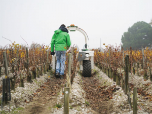 Meet Ted the vineyard robot trialed in Bordeaux and Portugal recently. It has been used for weeding and under vine cultivation.