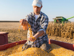 US$12b state aid for American farmers