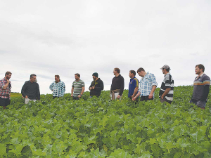 The Bruce District Action Group is transitioning to a self-funded group now that the Red Meat Profit Partnership has ended. Photo Credit: Joanne Cuttance.