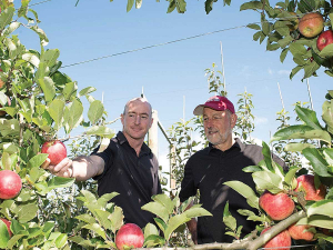 Plant and Food Research's Dr Ben van Hooijdonk (L) and Dr Stuart Tustin have been working on an MBIE funded research programme called Future Orchard Planting Systems or FOPS.