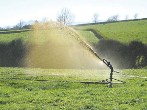 Irrigating effluent to a large area helps nitrate leaching.