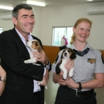 Puppies ready for biosecurity training