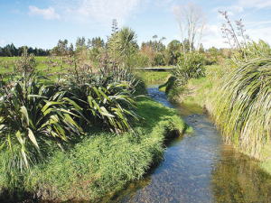 Fencing waterways offers lots of benefits