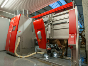 Lely launched its Astronaut A5 robot last month.