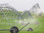 Award up for grabs for responsible irrigation