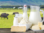Another solid rise in dairy prices