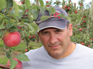 Most of the apples grown on Dean Nikora's orchard are destined for markets in South East Asia, including China.