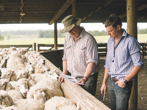 Researchers found that the ability to cope with adversity, finding new ways of doing things and getting on with the job, were important in how the NZ agriculture sector performed so well during the pandemic. Photo Credit: Kieran Scott