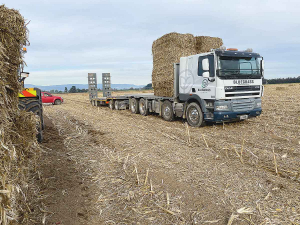 A scheme harvesting and carting maize stubble to dry regions is proving useful.