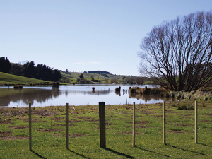 Plants, fencing keeps nasties out of water