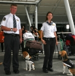 New dog teams at Christchurch