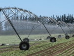 Centre pivot irrigators are among the most water-efficient means of irrigation. Regulations and limits on water availability encourage their use by farmers.