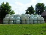 Quality silage is made from quality pasture.