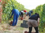 Backpackers working on Australian farms will have to pay more tax.