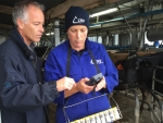 Patsy Booth and Dennis Hommel test CRV Ambreed's new herd testing device in the shed.
