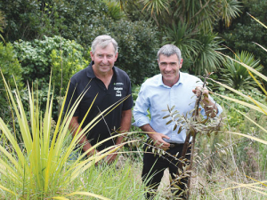 Ballance Environmental farmer of the Year Richard Kidd, with Primary Industries Minister Nathan Guy who planted a kauri on Kidd's farm.