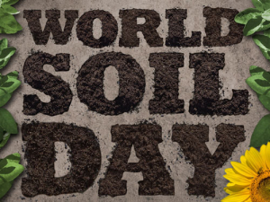 Happy World Soil Day!