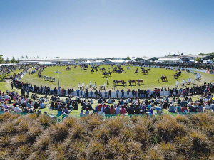 The cancellation of this year's show joins other key agricultural events that have been cancelled this year due to Covid-19 such as National Fieldays, Central Field Days and the Young Farmer of the Year.