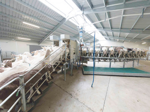 Hamish Noakes' Milkabit Farm uses a GEA rotary platform said to be the first of its kind in New Zealand.