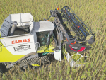 A double cutter hemp harvester being developed to handle the harvesting of seed and stalk. Photo: SUPPLIED.