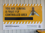 Auckland fruit fly operation ends