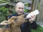 Vladimir Putin's ban on European dairy products has caused an oversupply.