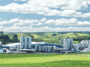 Fonterra says it owns 29 farms around its factories to irrigate  with excess water from manufacturing plants.