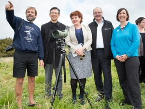 Fonterra, DOC supporting godwits and red knots