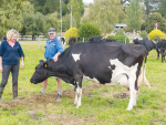 Raw milk supplier ploughs on