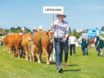 Lifeline for field day organisers