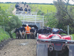 It is hoped a report showing good pay for dairy sector workers will help attract more New Zealanders to farming jobs.