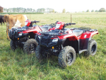Honda's new ATVs give choice