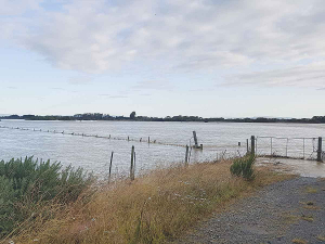 The Oreti River lapping at the top of the stopbank at the height of the Southland floods back in February.