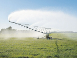 Irrigators unveil poll wish list