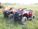 New regulations in Australia around Crush Prevention Devices will see Honda quit selling ATVs in that market.