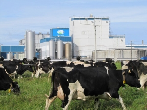 More job losses at Fonterra