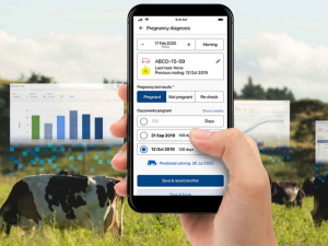 myHERD is the result of CRV's partnership with farm software provider, FarmIQ.