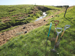 Fencing enhances freshwater  in many ways