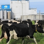 Fonterra fast-tracks investments