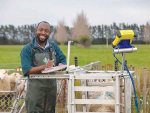 Massey PhD student Seer Ikurior will represent NZ in Germany in November promoting his research that aims to help sheep farmers sustainably control worms. Photo: Massey University.