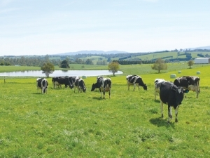 Federated Farmers is calling for the Government to apply diplomatic pressure with European countries wanting to move backwards towards more regulation.