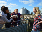 Ashburton students visit to a local farm