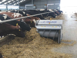 Feed robot boosts yield, saves costs